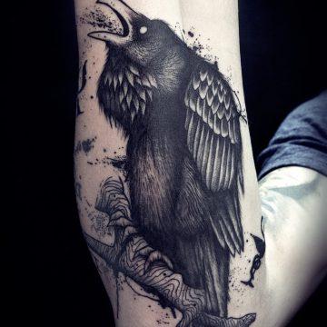 corbeaux-avant-bras
