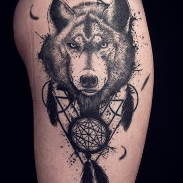 wolf-attrape-reve_healed